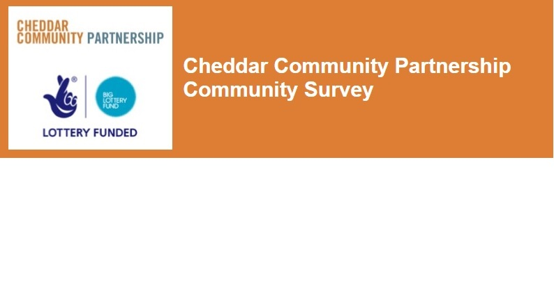 Community Partnership Survey